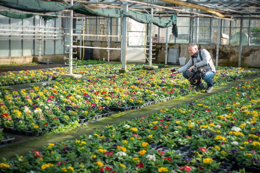 Agrargenossenschaft - MDR Frühlingserwachen